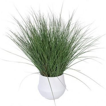 Plante Artificielle Graminée