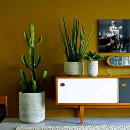 Plante Artificielle Cactus Euphorbe
