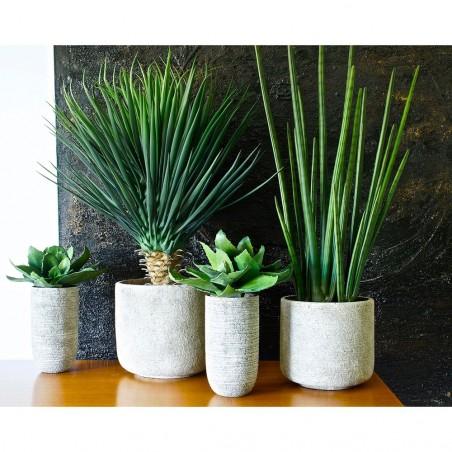 Plante Artificielle Le Sansevieira
