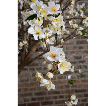 Arbre artificiel Cerisier 240 cm